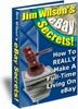 Thumbnail Jim Wilsons eBay Secrets